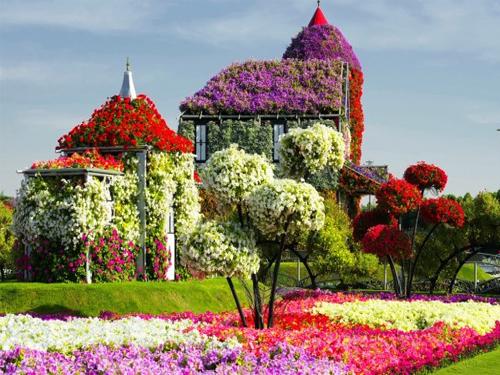 AVA тор за отглеждане на цветя