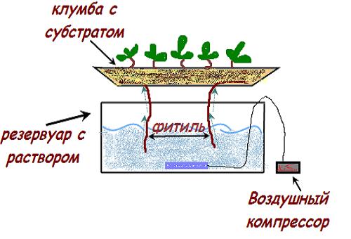 фитилна хидропоника система