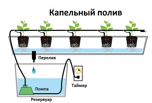 капково напояване при хидропонно отглеждане на растения