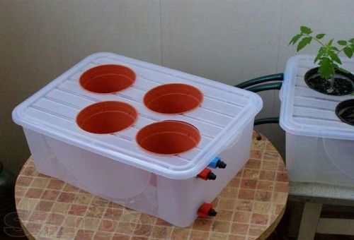 контейнер за хидропоника