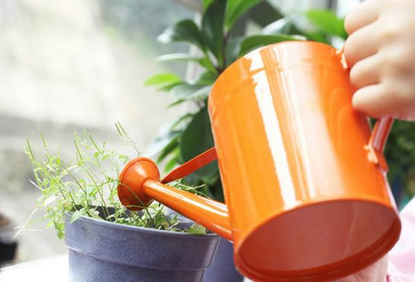 Подхранване на растенията с течен тор