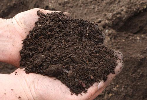 Разрошена почва