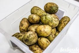 Зелени картофи за засаждане