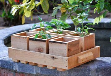 Кутия за дървени растения
