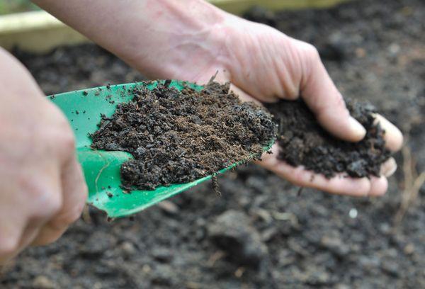 Наторена почва