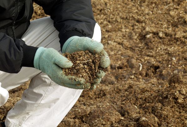 Калий в почвата