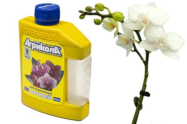 Течен тор Агрикола за орхидеи